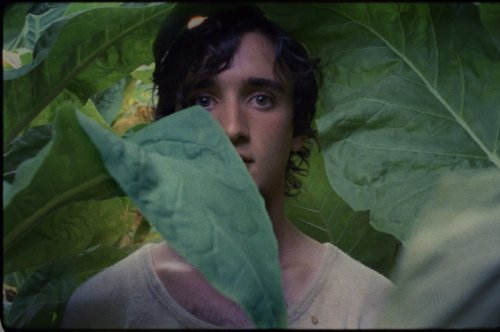 Image from Happy As Lazzaro